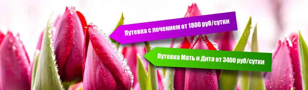 Путевка с лечением 03.09.18